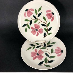 2 RIO Stetson China Co Dinner Plates Hand Painted